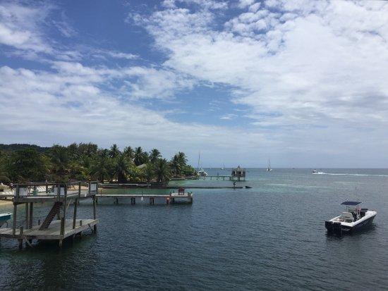 Bay Islands Adventures : photo3.jpg