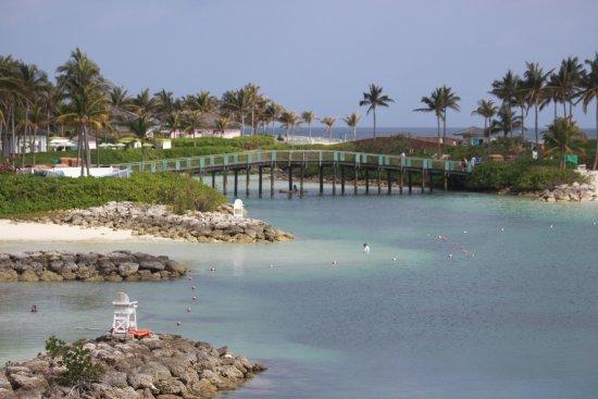 Zdjęcie Marine Habitat at Atlantis