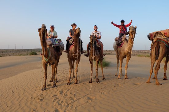 The Desert Life Camel Safari