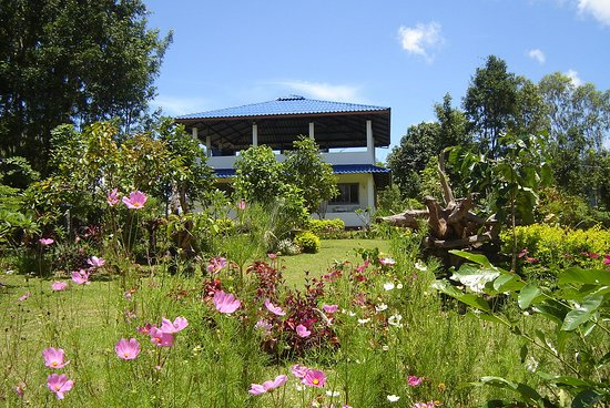 Phu Ruea, Tailandia: Our resort Ban Aloi