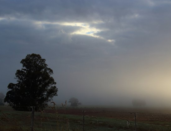 Mossiface, Australia: Morning fog