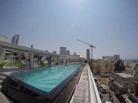 Pool Rooftop Picture Of The Poli House By Brown Hotels Tel Aviv Tripadvisor
