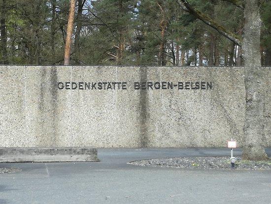 Bergen照片