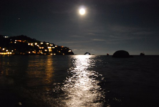 Beach at night - Picture of Haadtien Beach Resort, Koh Tao - Tripadvisor