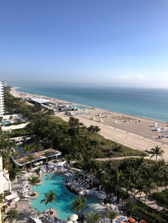 South Florida, Φλόριντα: View from the Penthouse; Royal Palm South Beach