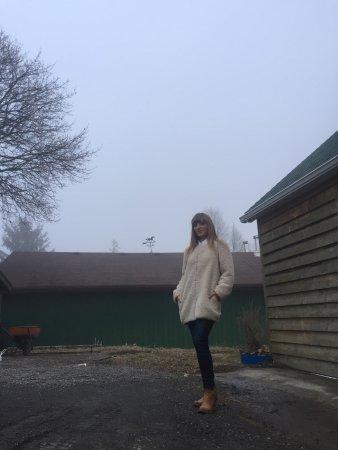 Bloomfield, Canadá: photo1.jpg