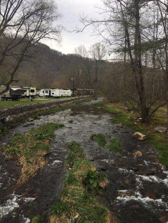 Cherokee / Great Smokies KOA: Trout stream