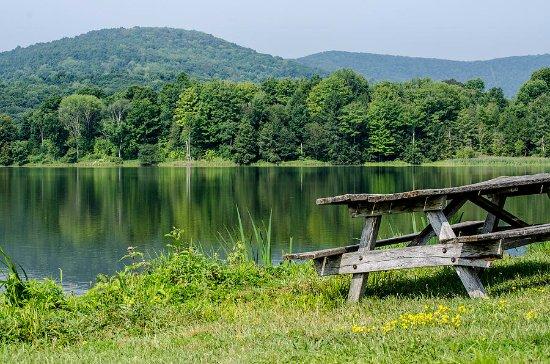Towanda, Pennsylvanie : Mountain Pisgah State Park