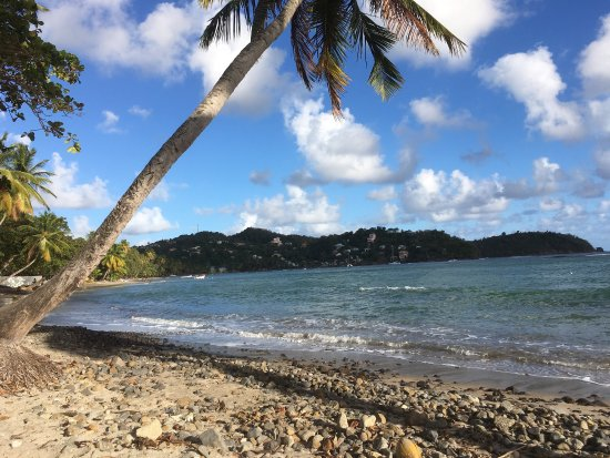 Laborie, St. Lucia: photo3.jpg