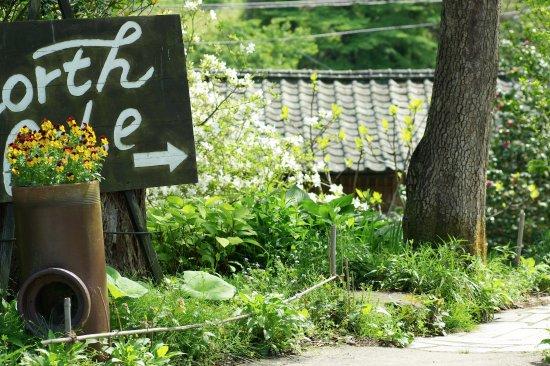 Tomiya-machi, Japón: 花の盛りの頃のお店