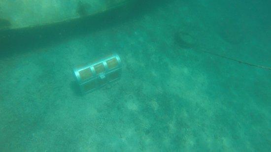 Herradura, Kosta Rika: Treasure chest