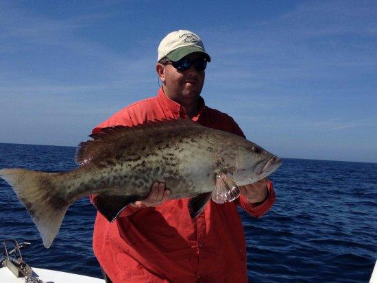 Apalachicola, FL: Copper Belly