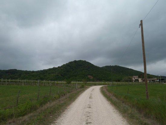 Scansano, อิตาลี: paesaggio