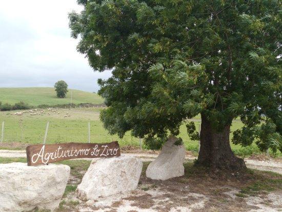 Scansano, Italia: l'agriturismo