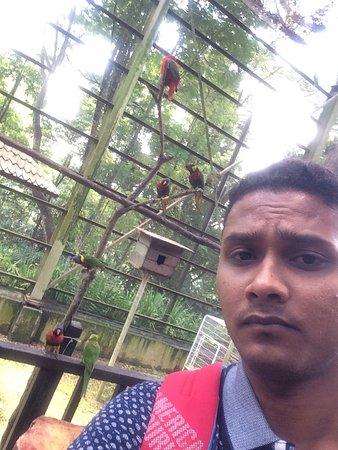 Kuala Lumpur Bird Park: Awesome pics )