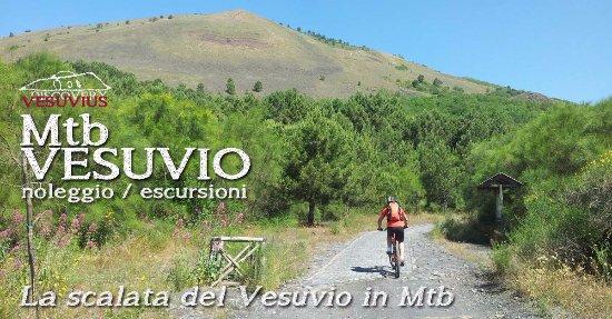 Associazione Discovery Vesuvius