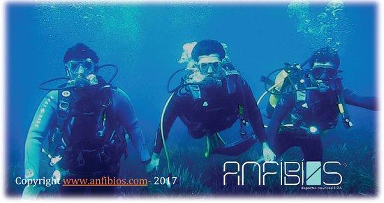 Sant Jordi, Spanje: Intro scuba diving. A real adventure. with anfibios Ibiza scuba diving