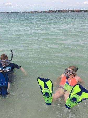 St Pete Beach Snorkeling The Best Beaches In World
