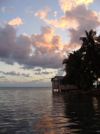 Tobacco Caye Picture