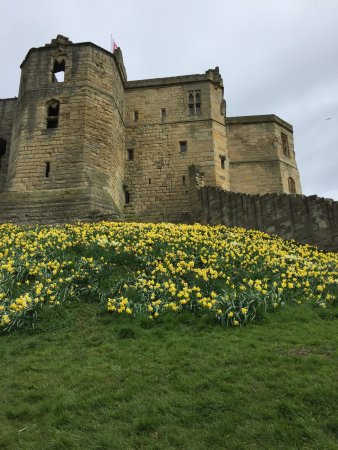 Warkworth, UK: photo4.jpg