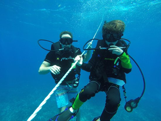 Jolly Harbour, Antigua: Diving with Indigo