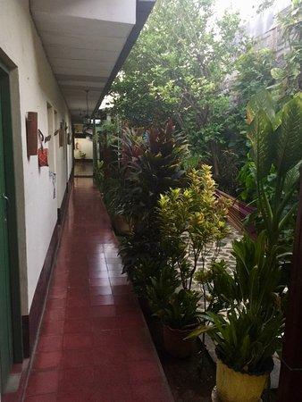 Hostal Casa Ivana: cour intérieure et jardin, face aux chambres