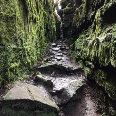 Leek, UK: In the chasm (Lud's Church)