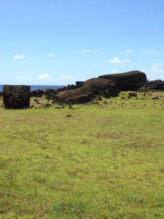 Ahu Akahanga: Moai rovesciato