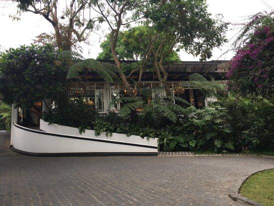 Antonio's Garden