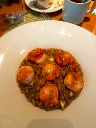 Newton, MA: scallops with quinoa