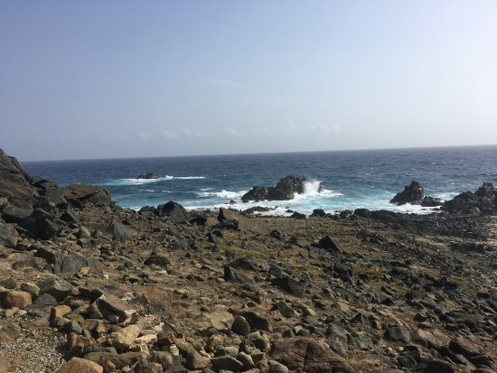 Aruba Off-Road Adventure : photo4.jpg