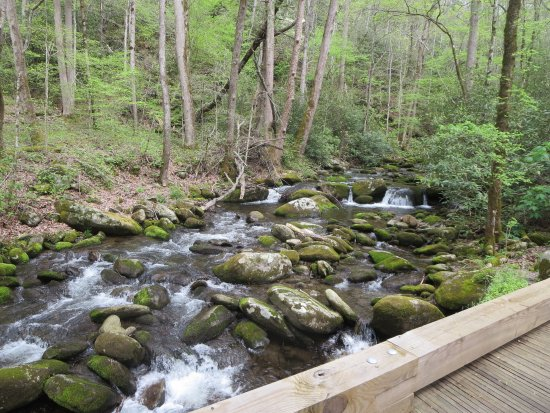 Roaring Fork Motor Nature Trail: The roaring waters