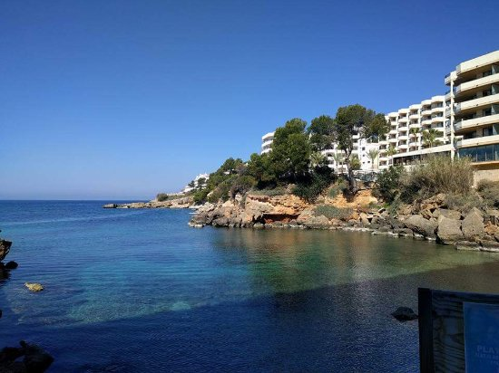 Fb img 1492633880681 picture of trh jardin del for Aparthotel jardin del mar santa ponsa