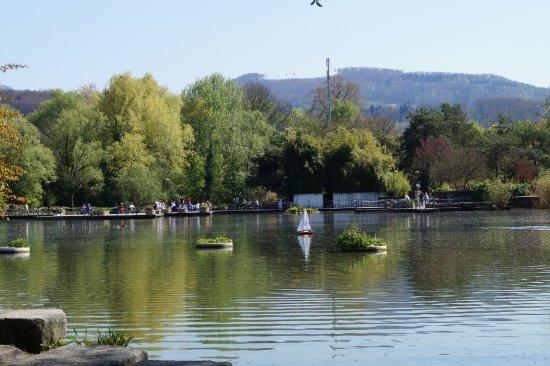 Merian Garten: Schöner See