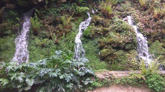 Cursos de agua en el parque botanico de gij n picture of for Jardin botanico cursos