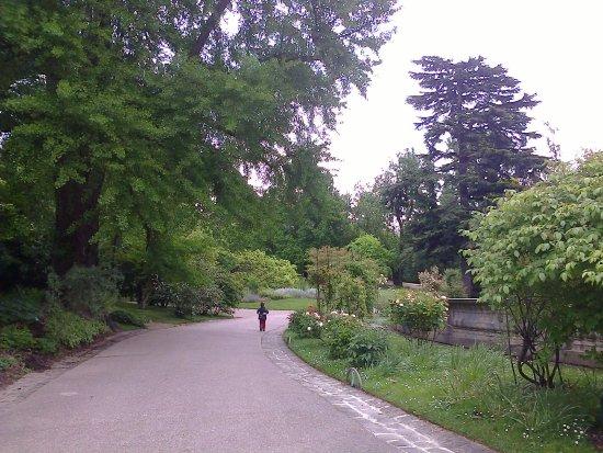 Jardin des serres d'Auteuil : Agréable allée