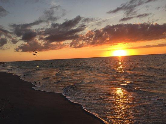 Снимок Belleair Beach