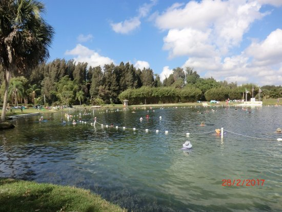 North Port, FL: The springs