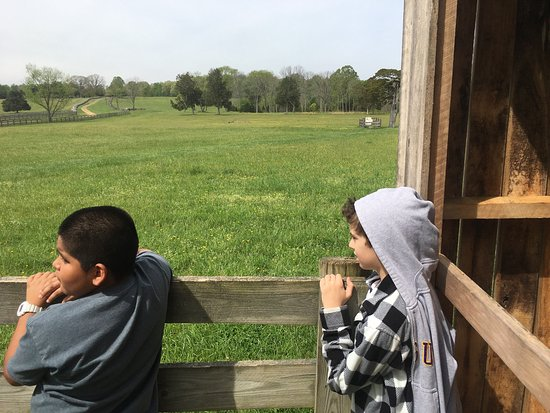 Appomattox, VA: photo0.jpg