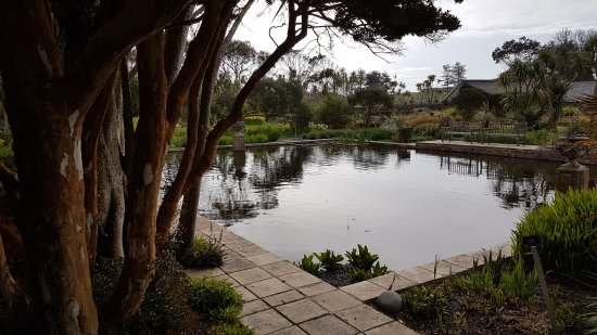 Port Logan, UK: Logan Botanic Garden