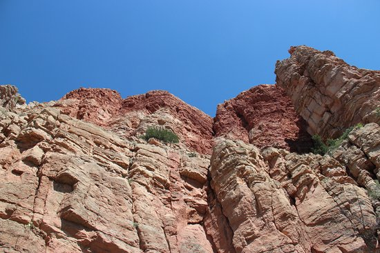 Verde Canyon Railroad: The straight up view. The train is very close to the rock.
