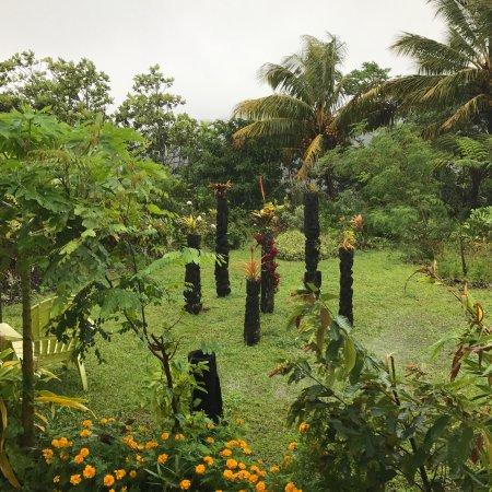 Le Morne-Rouge, Martinique: L'Atelier Vert