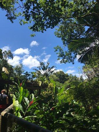Bouillante, Guadeloupe: photo3.jpg