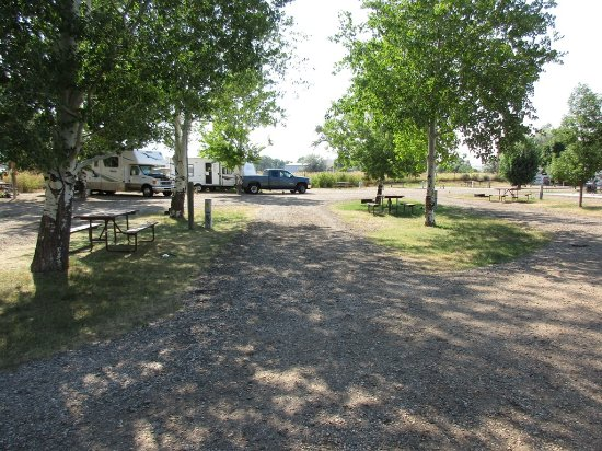 Buffalo, WY: typical site w/picnic table & fire ring