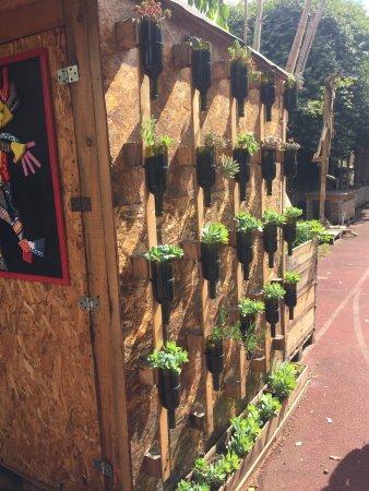 Orti Dipinti - Community Garden