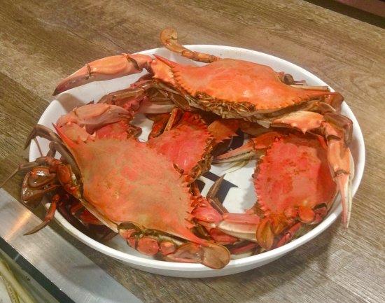 Houma, LA: Nancy's Seafood and Oyster Bar