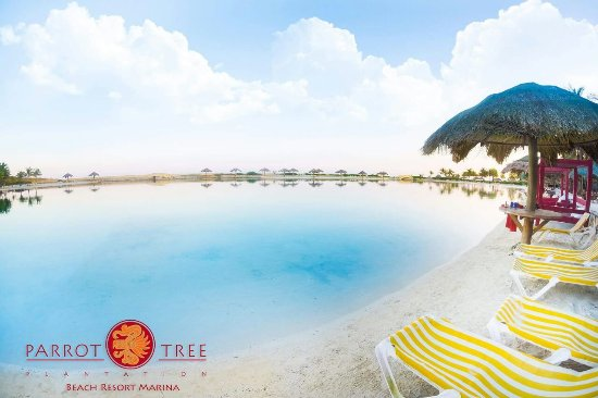 Parrot Tree Beach Resort: This is Paradise!