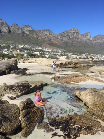 Camps Bay, South Africa: photo1.jpg