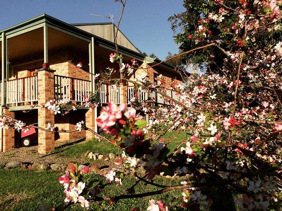 Moruya, Австралия: Gardens