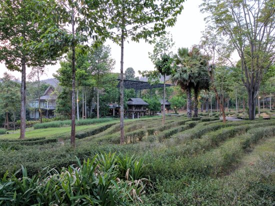 Private resort in northern Thai mountains
